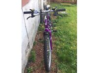 Ladies purple Mountain Bike with helmet and lock for sale