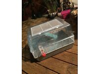 Hamster cage and extras