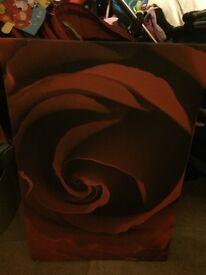 Rose canvas