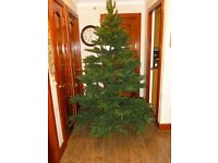 7 ft artificial Norwegian Fir tree with stand and storage bag.