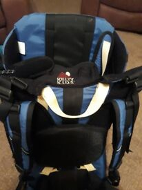 Childs backpack carrier
