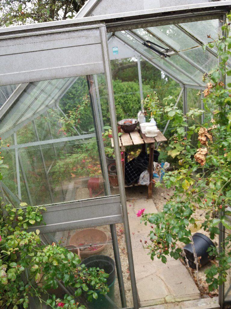 greenhouse 8ft X 6ft , free