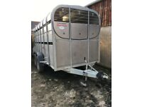 Cattle trailer Nugent 12ft