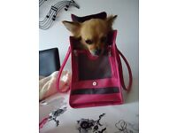 Beautiful Bag Leather pink designer Outward Hound dog carrier £20