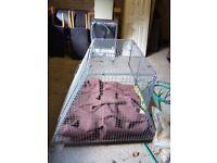 Dog Crate 100cm L 34cm W 75cm H