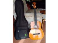 Acoustic guitar and carry case both in very good condition.
