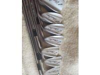 Mizuno Silvercup Irons 3-Sw