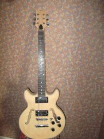 Kit built semi acoustic guitar