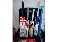 Cricket bats and wickets