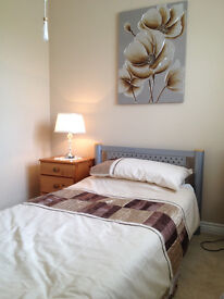 Single Bed, Bedside Cabinet, Canvas Painting, Bed Set and Fitted Sheet. Excellent condition.