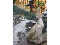 Huge solid stone heron water fountain