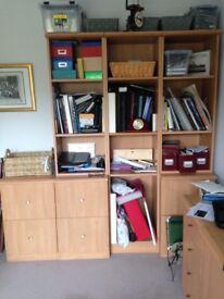 Study/ filing/ bookcase