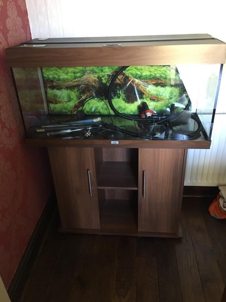 Juwel Rio 180L FISH TANK AQUARIUM T5 lights complete setup