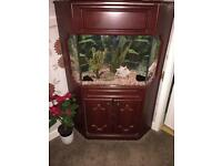 Corner Fish Tank and Cabinet