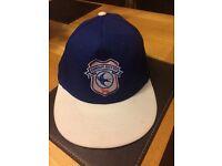 Bluebirds cap and top