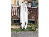 CBC fish surfboard