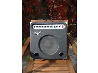 Page amplification B30 - digital effects amp