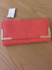 Coral Warehouse purse