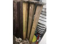 Fencing boards (8metres length) & posts 1.2m high £50 for the lot