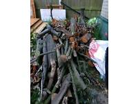 Large selection of logs