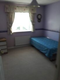Room to let in a very nice detach house in a good location with good access to all major amenities