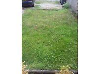 Free garden turf