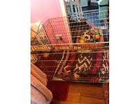 Large nearly new dog cage