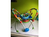 Baby Activity Bouncer (Fisher Price)