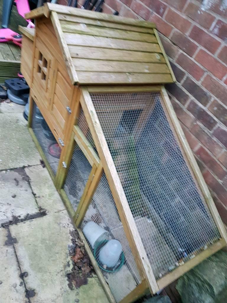 Rabbit/chicken hut