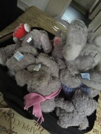 Bunch of me to you bears for sale cheap*
