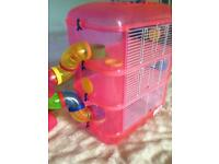 Lovely hamster cage and accessories