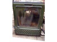 Esse multi fuel /woodburning stove