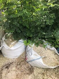Two 2 tonne bags of Cotswold chippings (shingle), 20mm