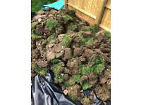 Free soil and turf for collection. £70 cash given to the collector