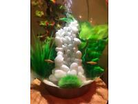 Biorb 30 fish tank
