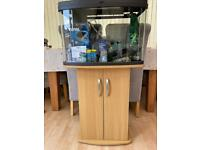 Panorama fish tank and unit 64 Litre