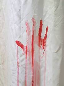 Shower curtain and pole