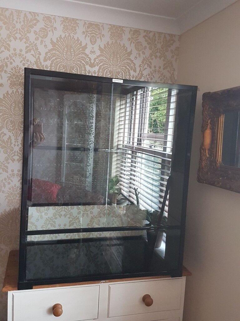 Komodo Chameleon Glass Terrarium In Yeovil Somerset