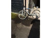 Boys Tesco Mountain Bike-