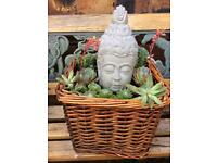 Wicker Succulent planter with cement Buddha statue