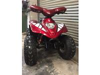 Apache quad bike 100cc