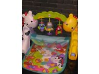 The Fisher Price Newborn to Toddler Play Gym