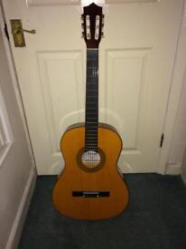 Acoustic Guitar Herald Hl44