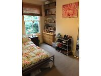 Lovely large double room in friendly flat 5 mins from both Brixton & Herne Hill