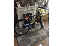 Beach bike great condition