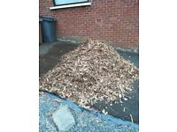 Coarse bark chippings - free!