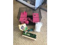 Hamster , cage and accessories