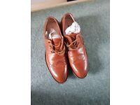 Mens route 21 shoes