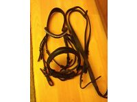 Black Italian leather comfort bridle
