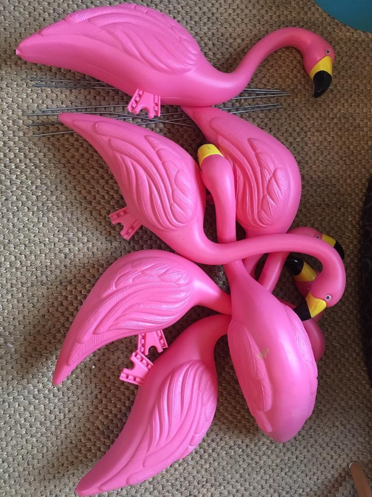 6 pink plastic flamingoes!